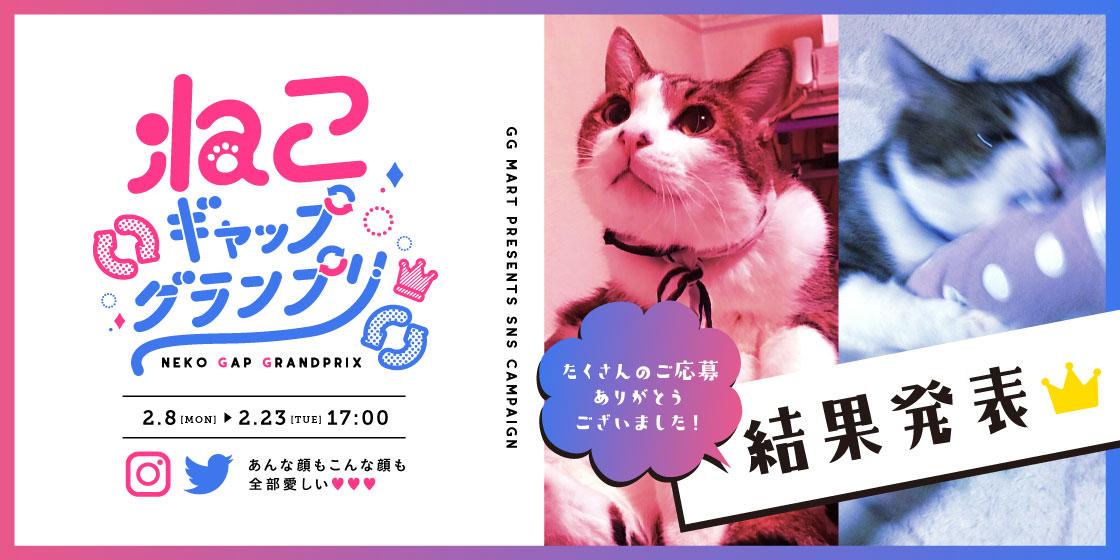 2月22日は猫の日(にゃんにゃんにゃん)!ggねこギャップグランプリ